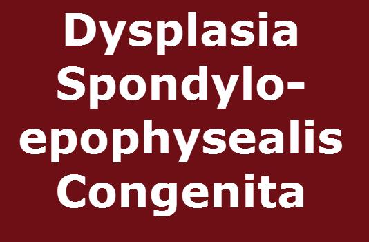 Dysplasia Spondyloepophysealis Congenita