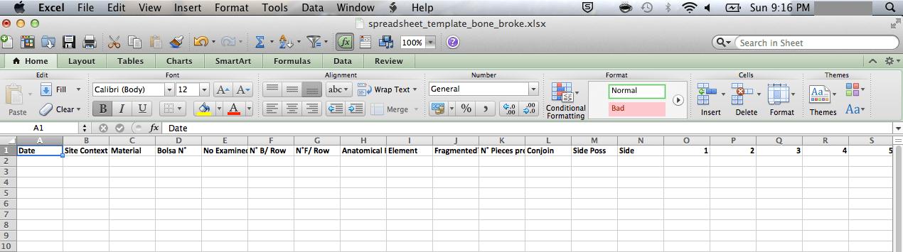 How to set up a spreadsheet like a boss | Bone Broke