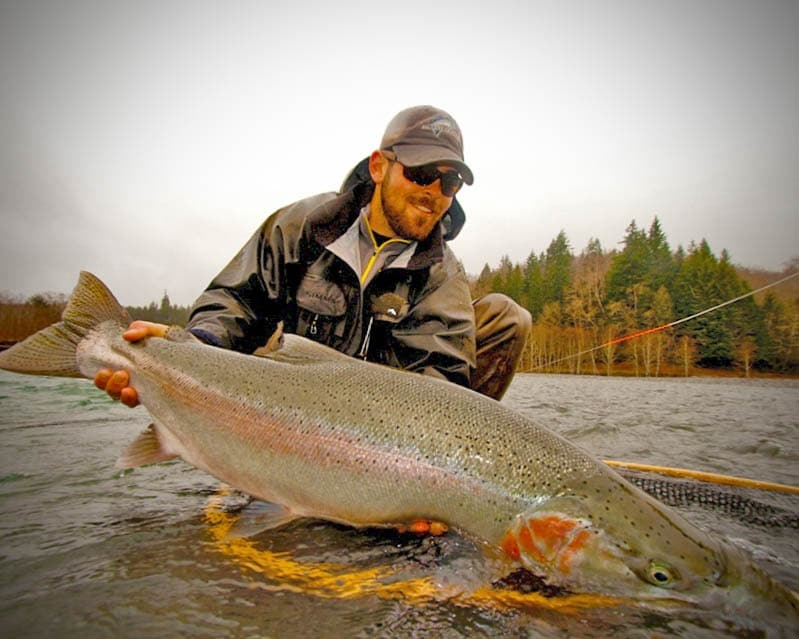 Olympic Peninsula Steelhead Last Chance To Take Action