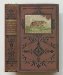 Illustrated sketches of natural history, 1864-1866