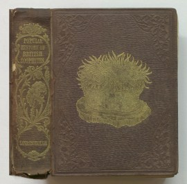 A popular history of British zoophytes or corallines, 1852
