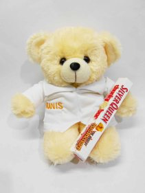 boneka puffy bear karakter profesi dokter