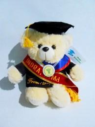 boneka wisuda puffy bear nama di baju dan selempang wisuda