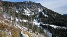 Beargrass highway