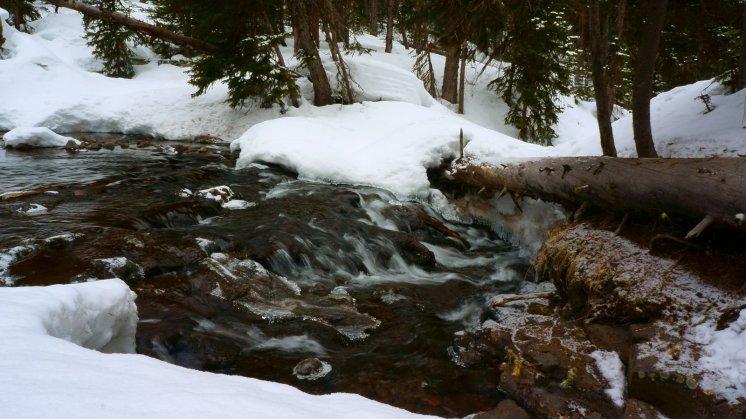 Hyalite Creek