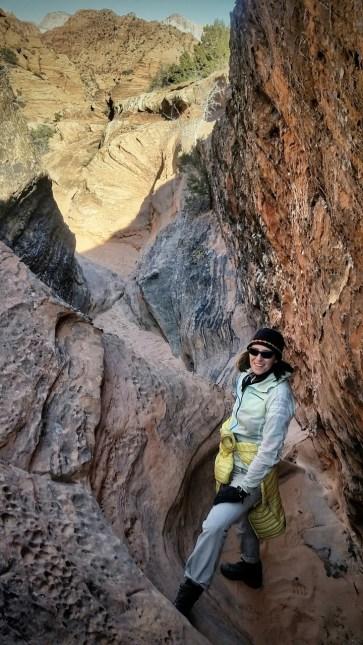 Snuggles climbing rock