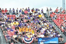 Pirate Nation had a contingent at Louisville's Jim Patterson Stadium. (Photo by Al Myatt)