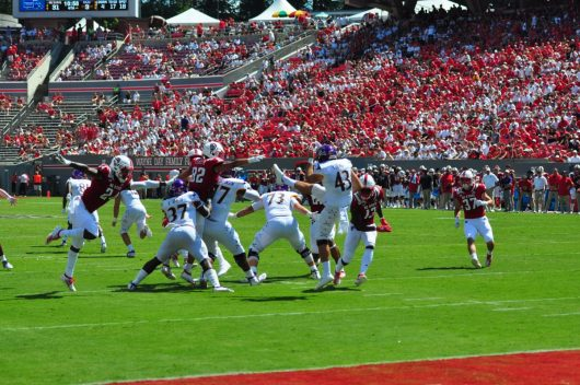 ECU punter John Young gets a punt off under strong pressure from the NCSU punt block. The junior in-state talent was a bright spot on what looked like an across the board improved special teams unit for the Pirates. (W.A. Myatt photo)