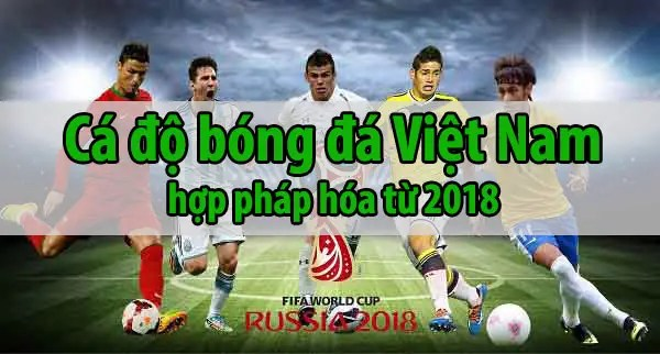 ca do bong da viet nam hop phap hoa worldcuo 2018 W88   nhà cái cá độ bóng đá online uy tín tặng 4,000,000VND cho thành viên mới