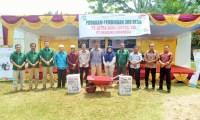 PT EDI Bina Petani Desa Muara Dilam Merawat Kebun Kelapa Sawit
