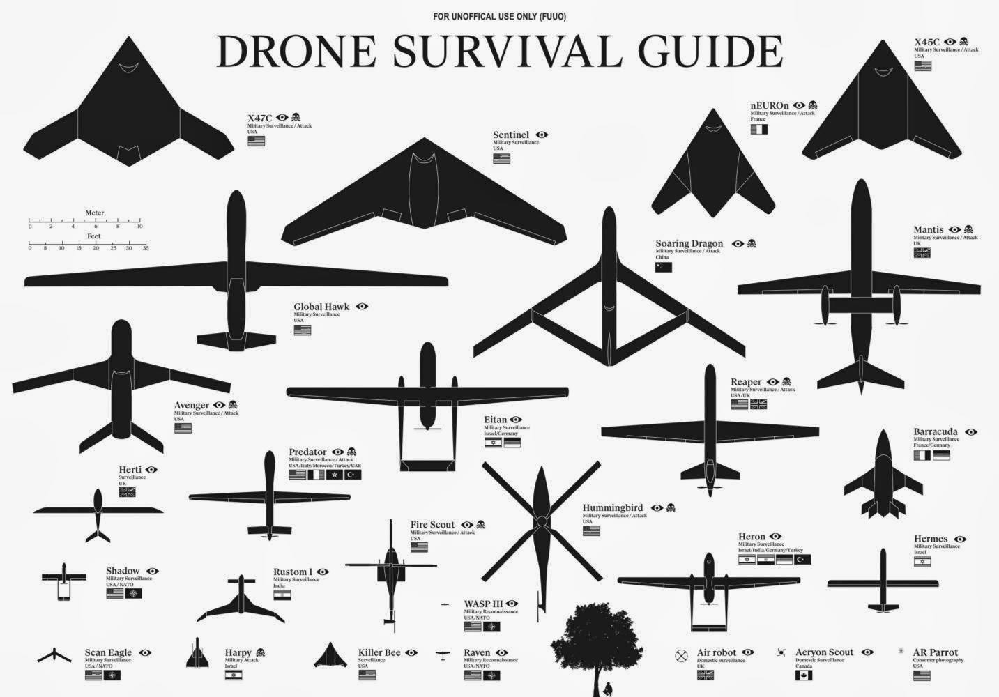 Infographic: Drone Survival Guide