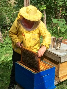 Beekeeping demonstration in the village of Dihovo - Real Food Adventure Macedonia and Montenegro