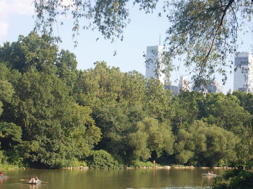Notre itinéraire à New York - Central Park