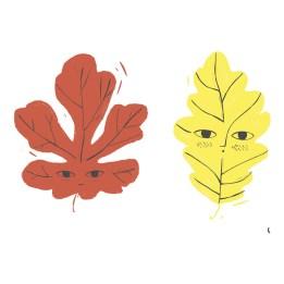 affiche-feuilles-a4