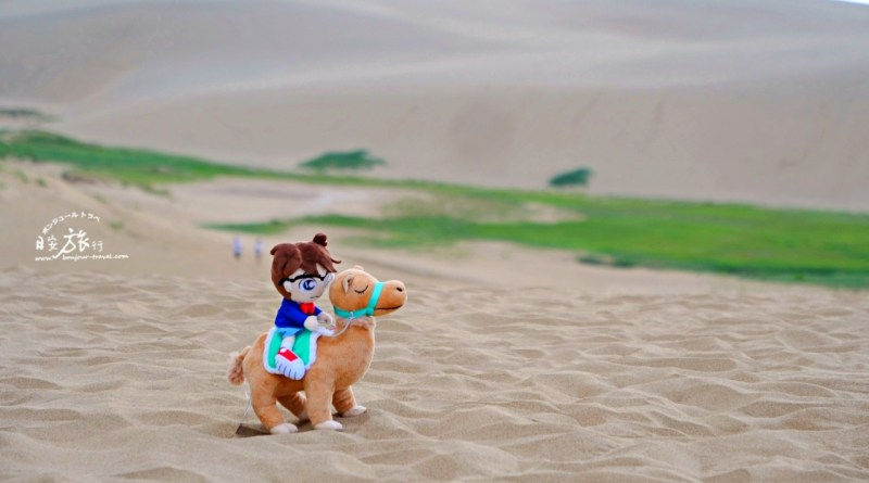 (山陰-鳥取) 鳥取必訪的日本第一砂丘絕景~鳥取砂丘、砂丘會館