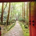 【大阪】泉州来たら犬鳴山へGO ちょうどいいハイキングが気持ちいいぞ