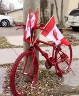 bike 2 brechin remembers