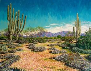 Desert Scene Near Carefree Arizona