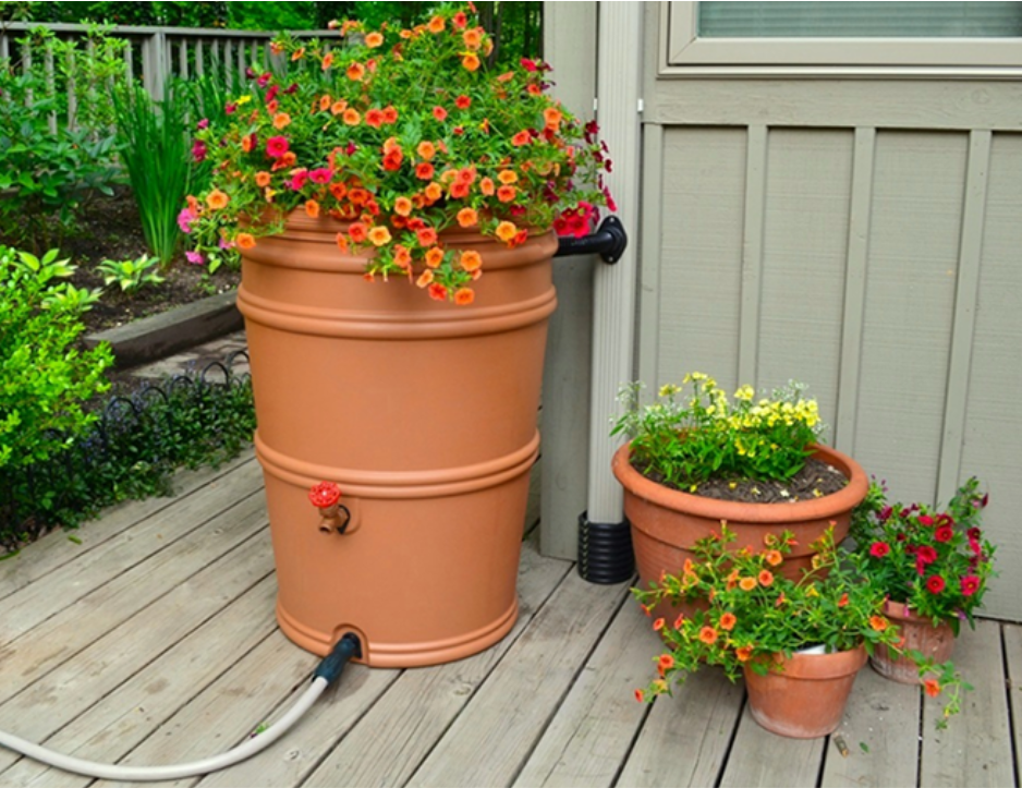 Terra Cotta Rain Barrel with Flowers on top