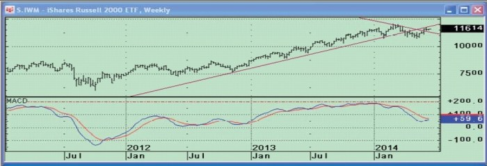 IWM-weekly1-small