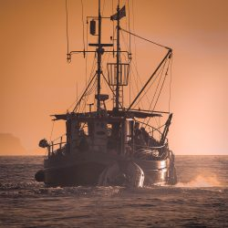 BL fishing boat sunset
