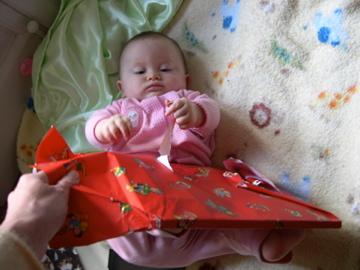 Robin on Christmas Morning