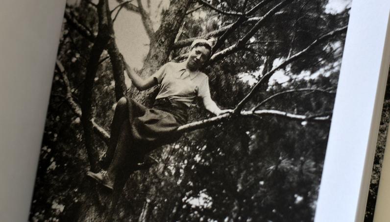 Une fille dans un arbre