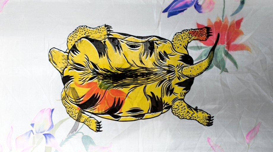 Dans L'explosion de la tortue