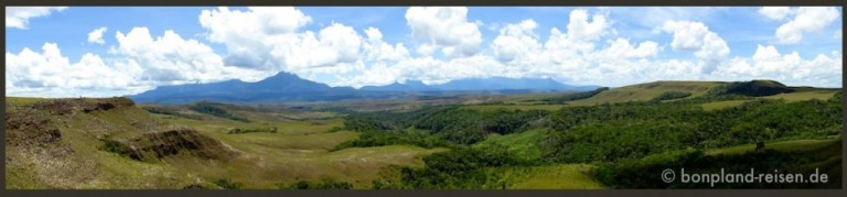 2010 Venezuela 95