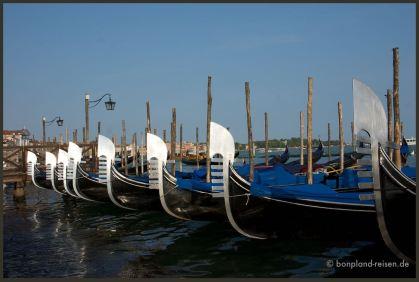 2011 Venedig Schweiz 35
