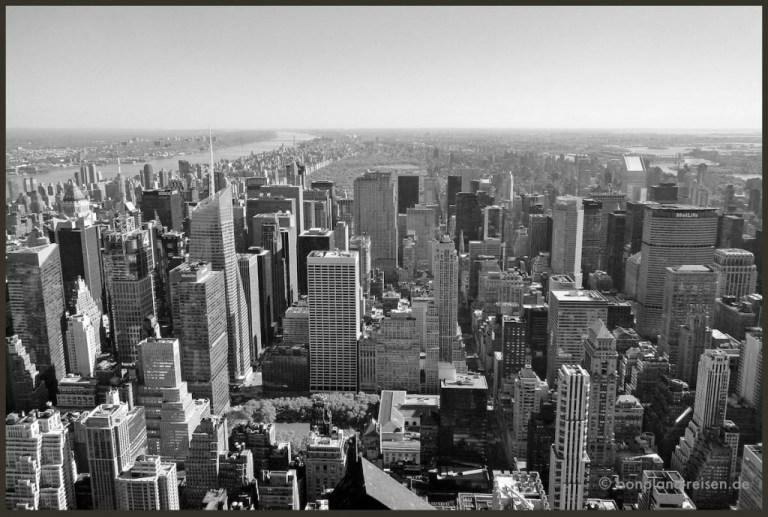 2012 New York 5