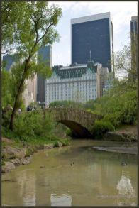 2012 New York 82