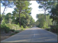 Mallorca_0052