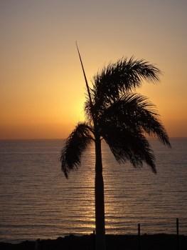 Fuerteventura 2017-15