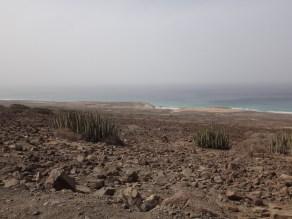 Fuerteventura 2017-41
