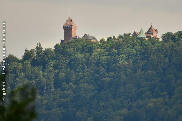 Le château du Haut-Koenigsbourg vu depuis le village de La Vancelle