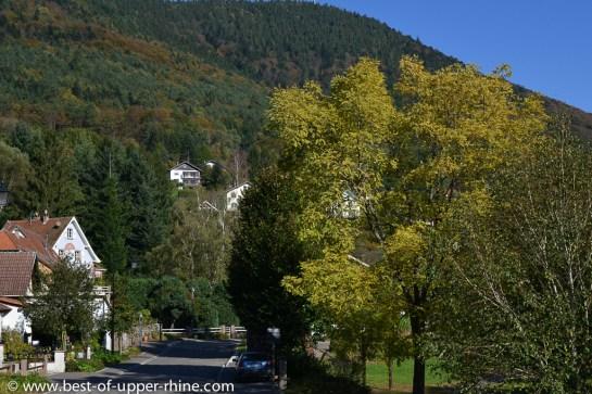 Le village de La Vancelle, un refuge nature non loin de la route des vins d'Alsace.