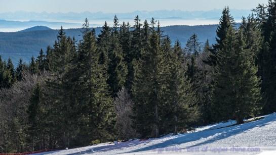 Les Alpes bernoises vues depuis le circuit des Immerlins au Lac Blanc