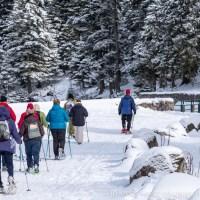 Vacances d'hiver en Alsace : journée à la neige, soirée dans le vignoble !