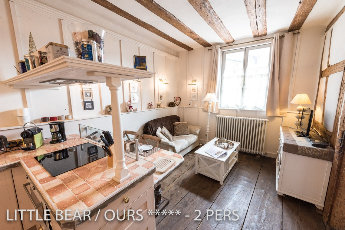 L'ours à riquewihr - appartement 5 étoiles vue du salon