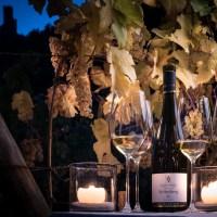 Vin d'Alsace : mes adresses préférées de vignerons