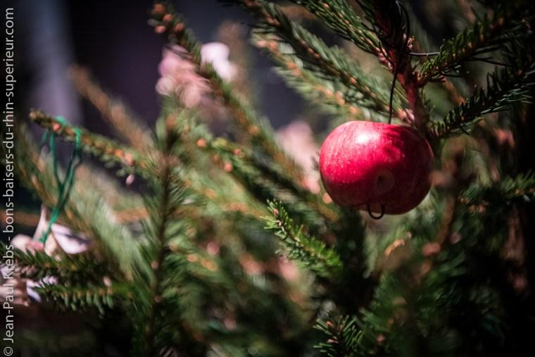 Une forêt de sapins soigneusement décorés pour découvrir l'étonnante histoire du sapin de Noël à travers les siècles