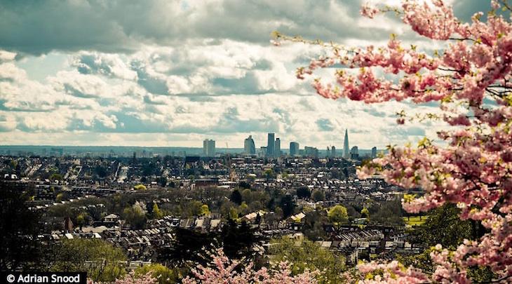 parc-londres-hampstead-heath