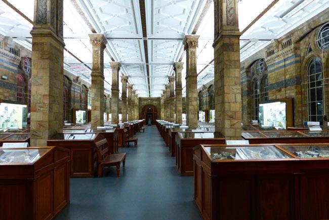 mineralogie-musse-histoire-naturelle