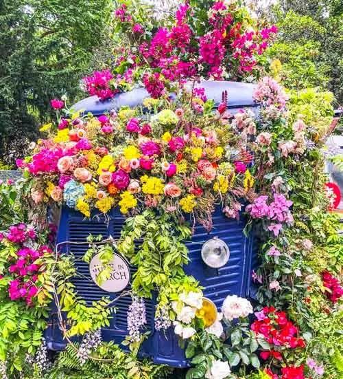 chelsea-flower
