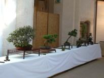 2010 -expo saint remi - 009