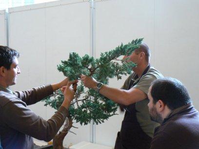 2010 -expo saint remi - 054