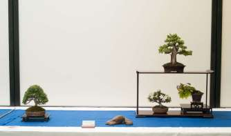 Shohin-display, Torben Brenfeldt