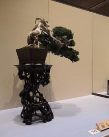 Kokufu Ten 2013 JS (18)