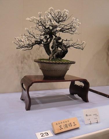 Kokufu Ten 2013 JS (48)